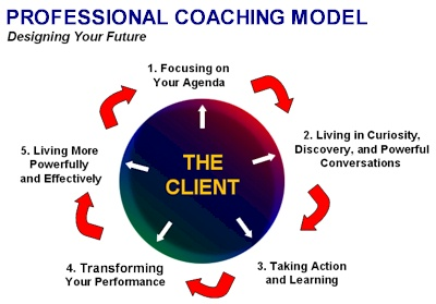 Image result for Brief About Business Coaching Professionals
